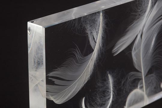 Acrylglas und besondere Einlagen